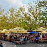 Fruehlingsfest-Neumarkt-2019-0022