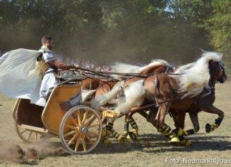 Pferde- und Fohlenschau beim Neumarkter JURA-Volksfest
